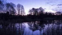 Little Budworth Mere - Sunset 1.jpg