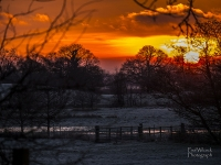 1401 Sunset over Frosty Fields.jpg